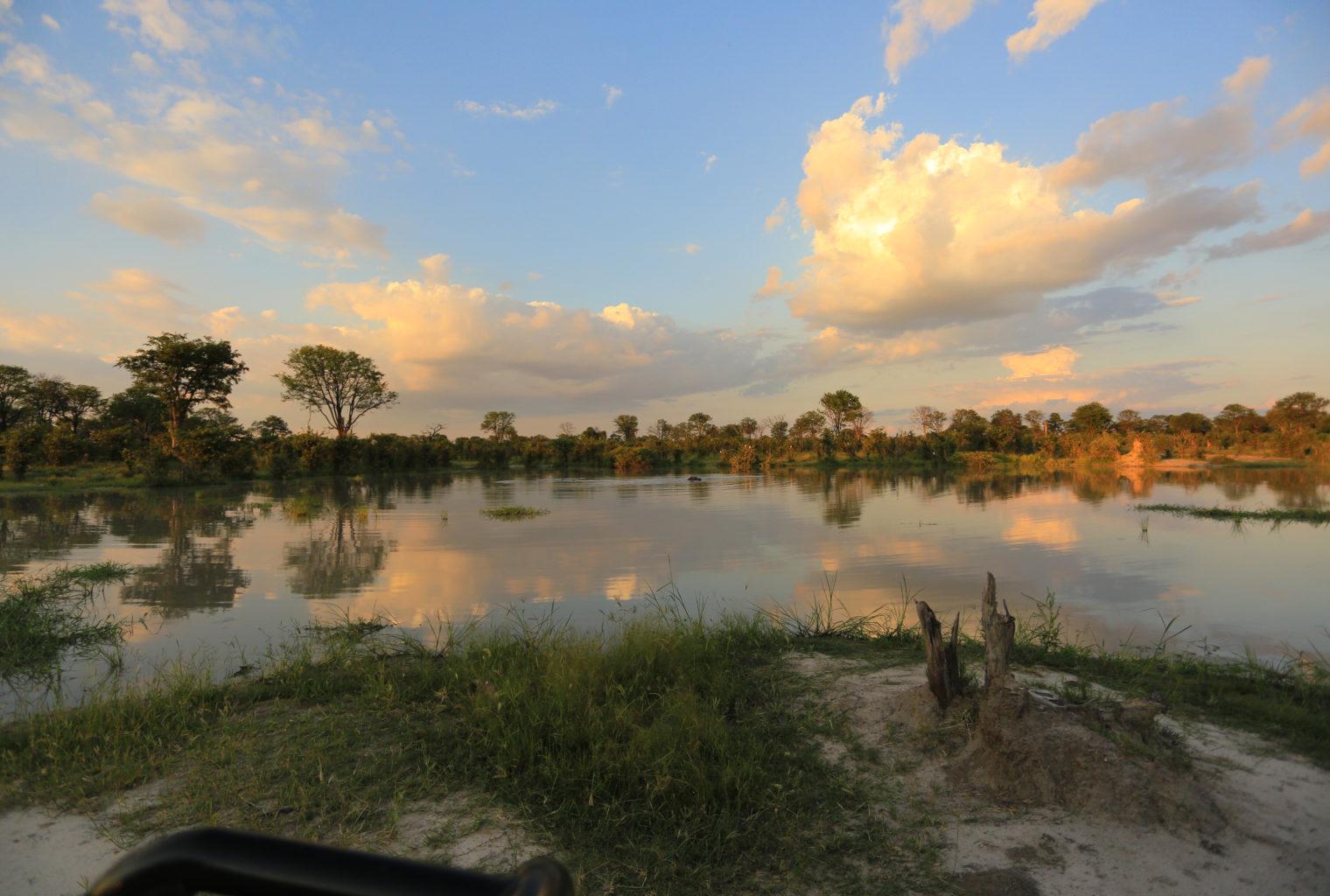 Okavango Delta Botswana Reflection