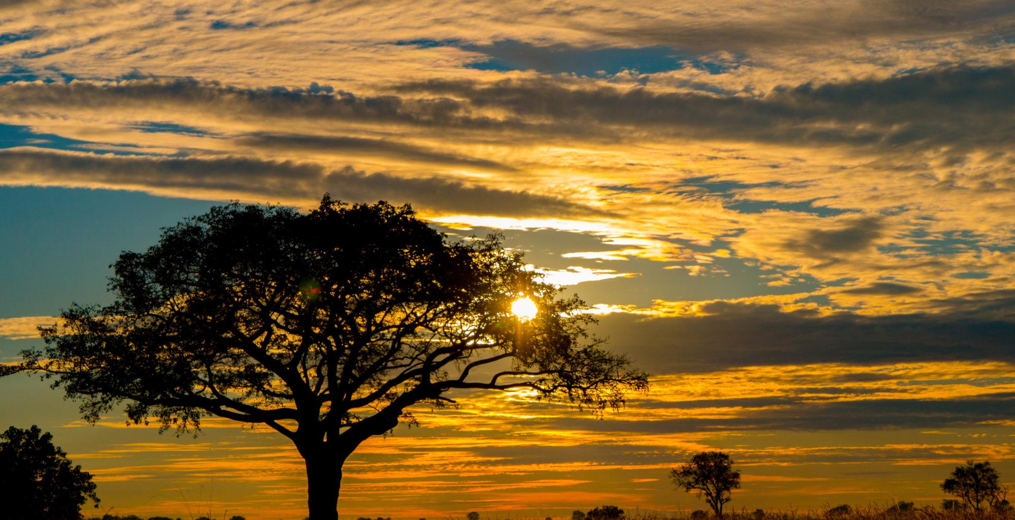Okavango Delta Botswana Sunset