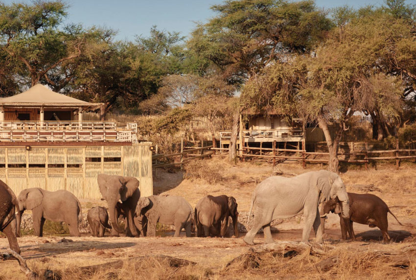 Belmond Savute Elephant Botswana