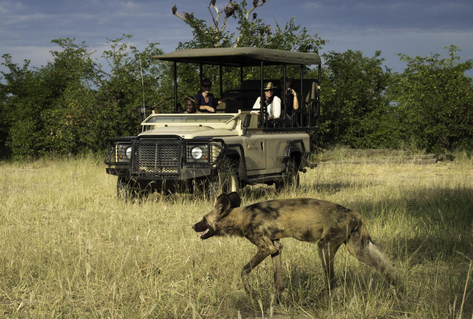 Kings Pool Camp Botswana Safari