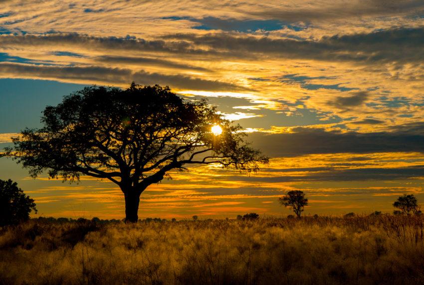 Kwando Kwara stunning sunset