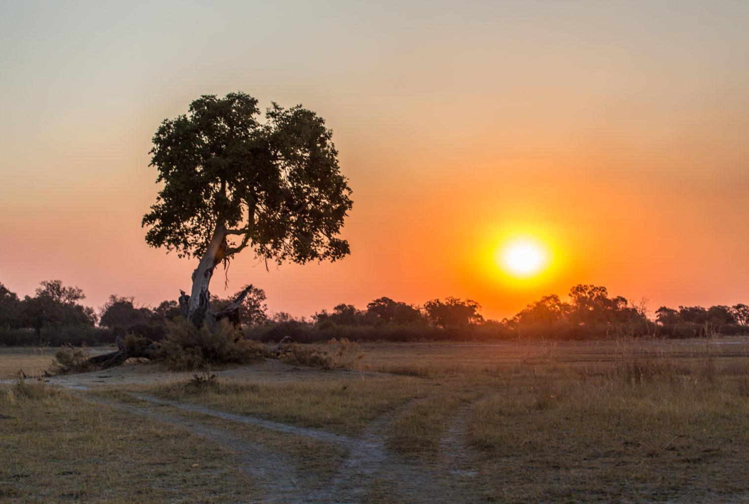 Kwando Concessions Sunrise