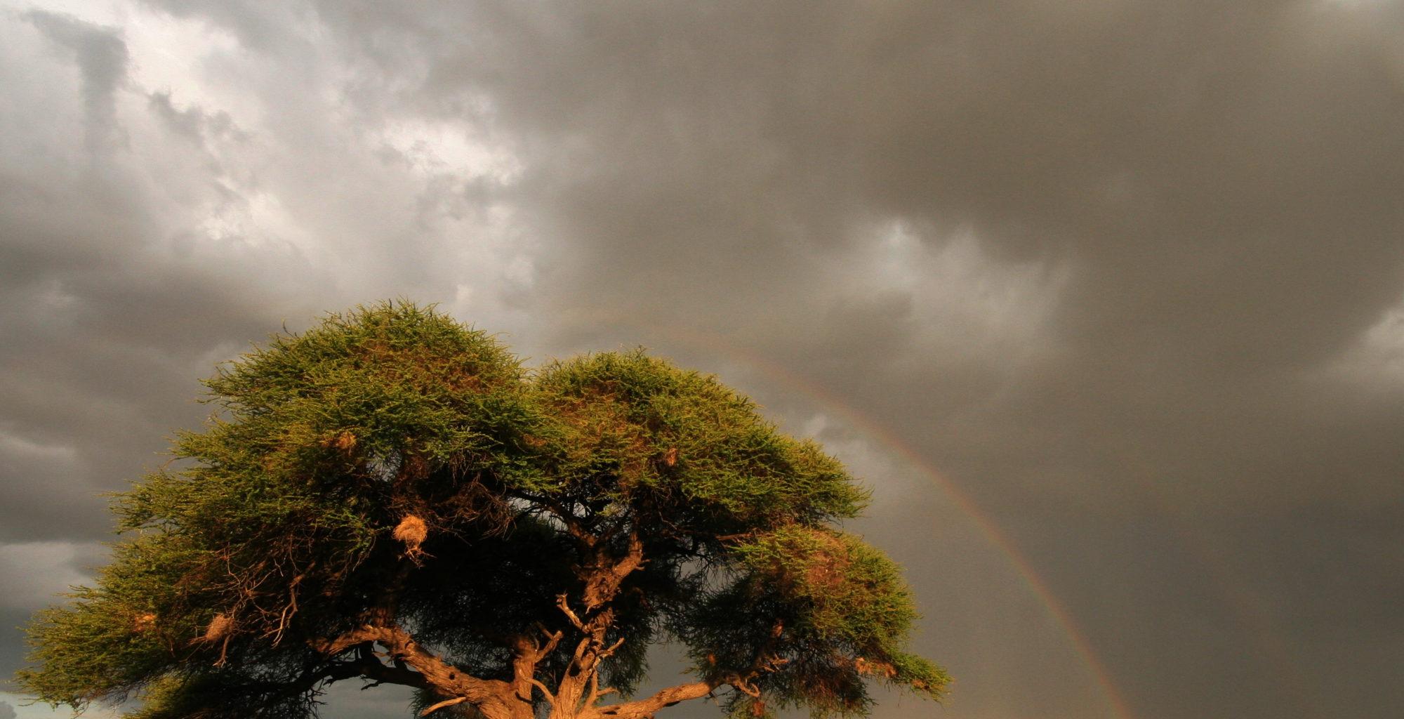 Kalahari Reserve Botswana Rainbow Clouds