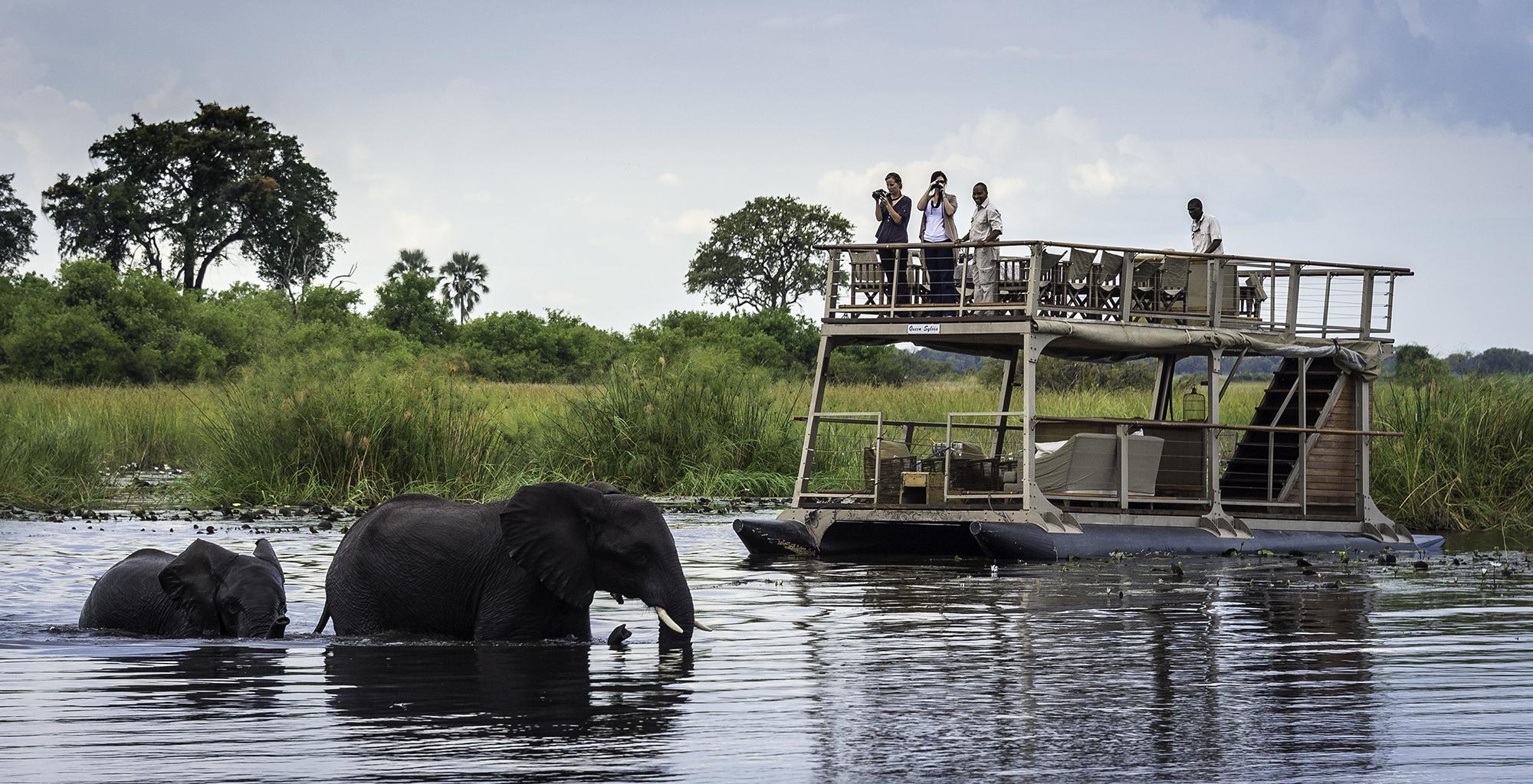 Botswana-Kings-Pool-Boat-Safari