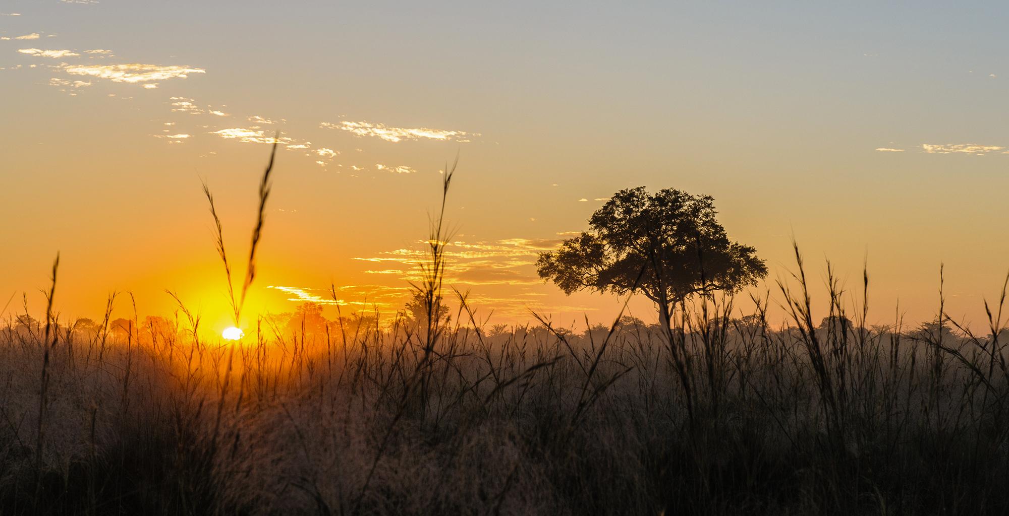Botswana-Kwando-Lagoon-Sunrise