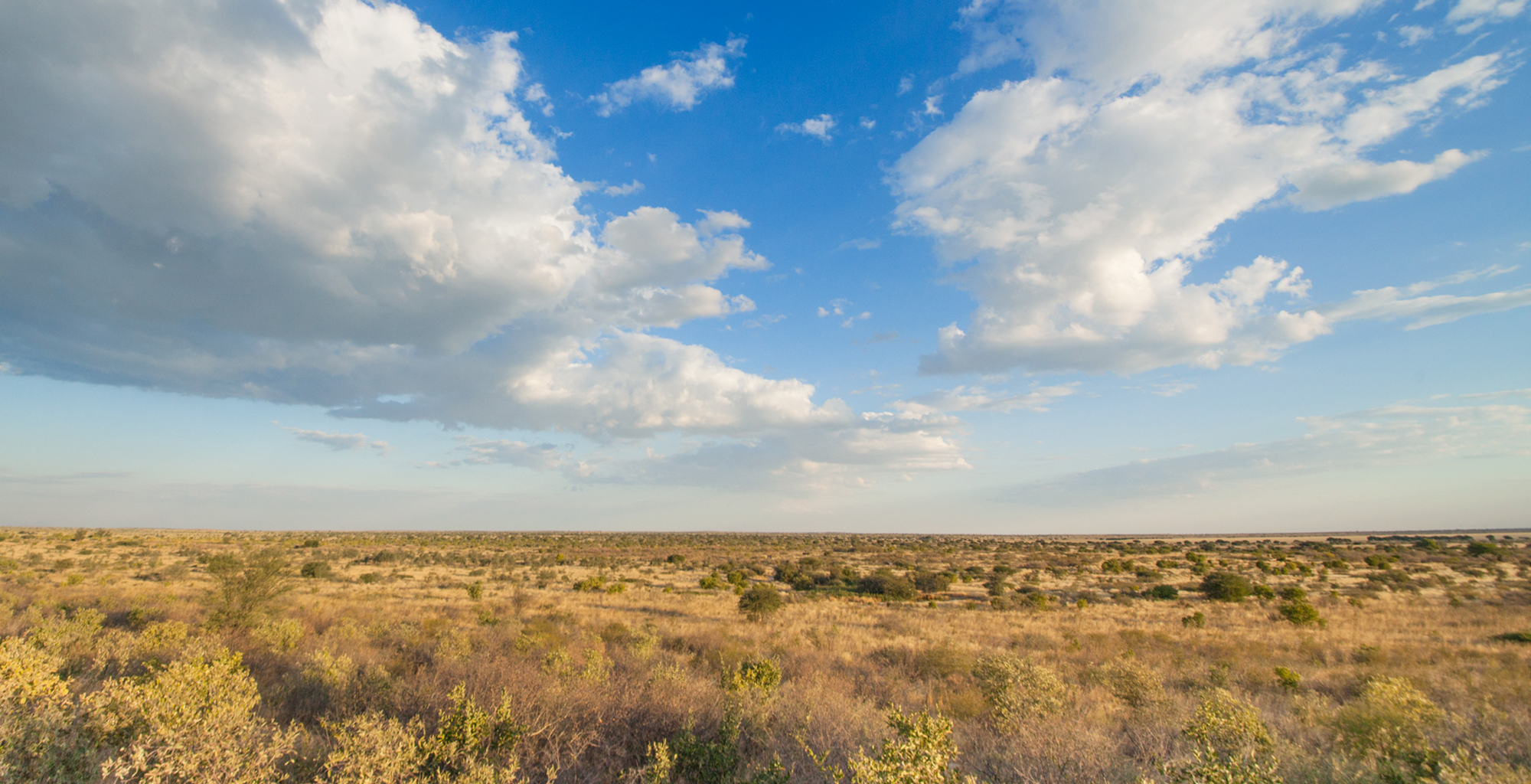 Botswana-Kalahari-Reserve-Landscape