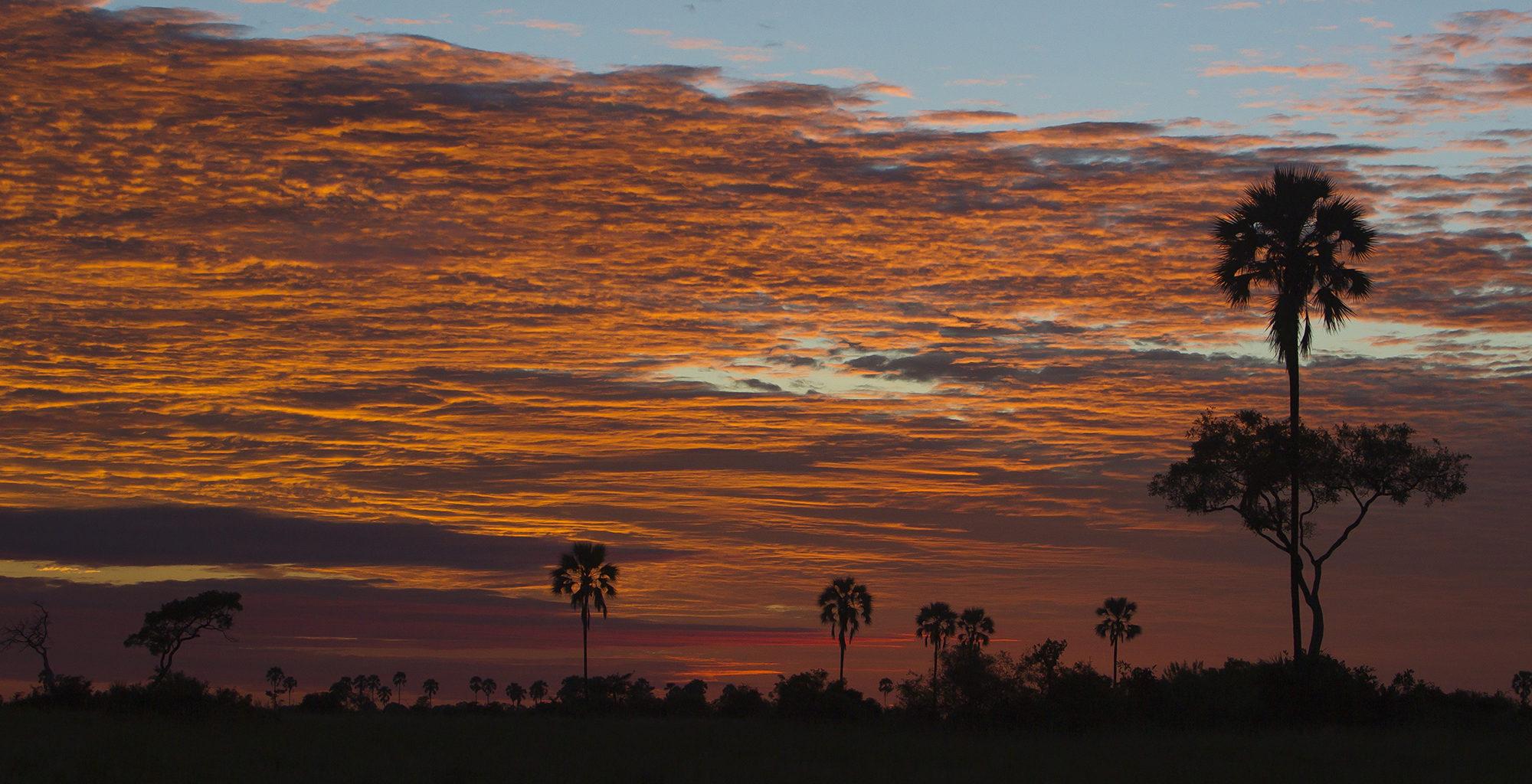 Botswana-Selinda-Concessions-Sunset