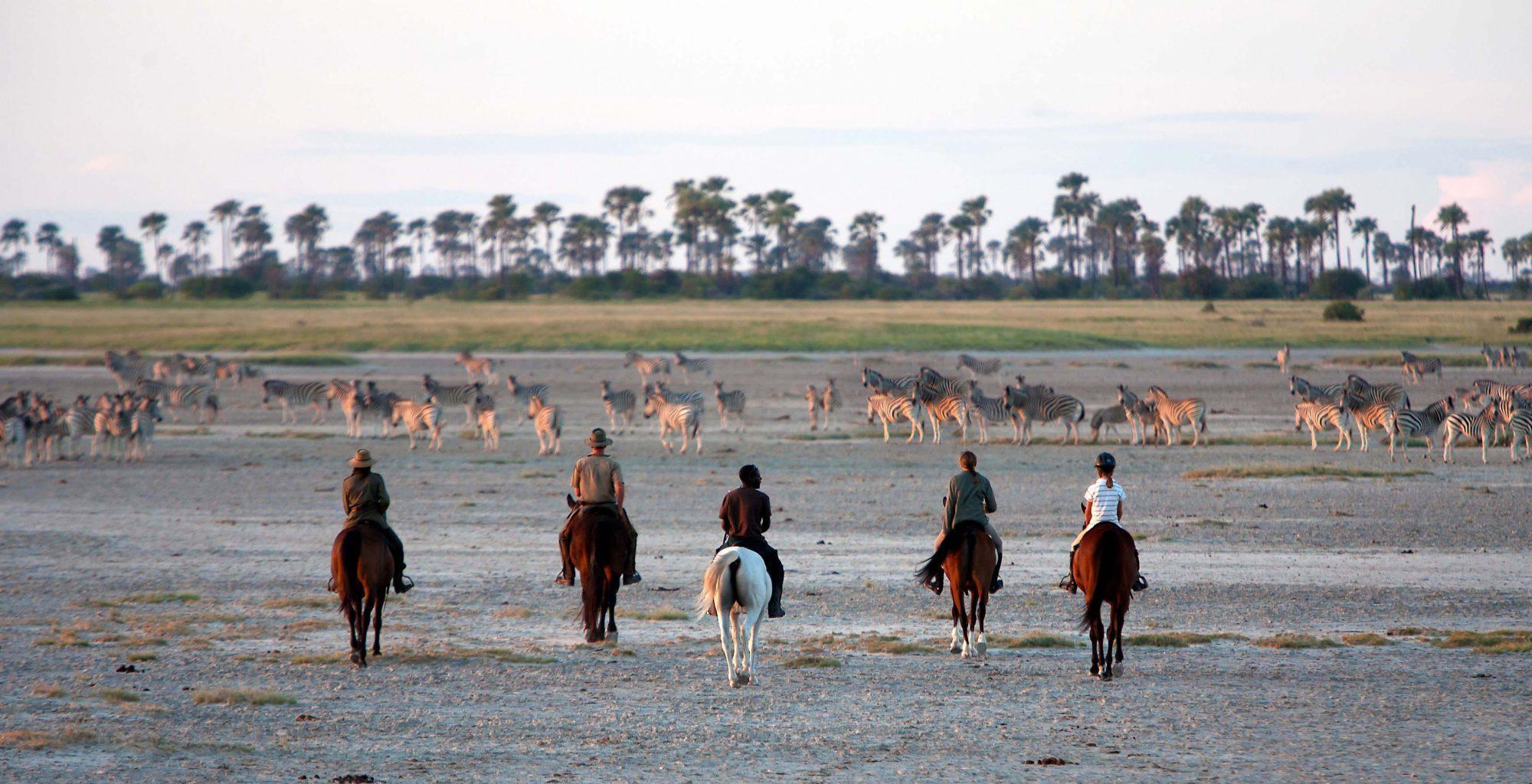 Botswana-Kalahari-Makgadikgadi-Pans-Horse-Safari