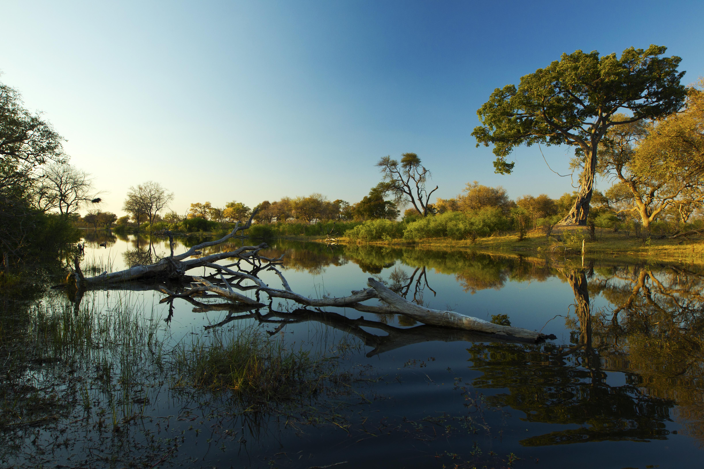 Selinda Explorers Camp Botswana Lanscape