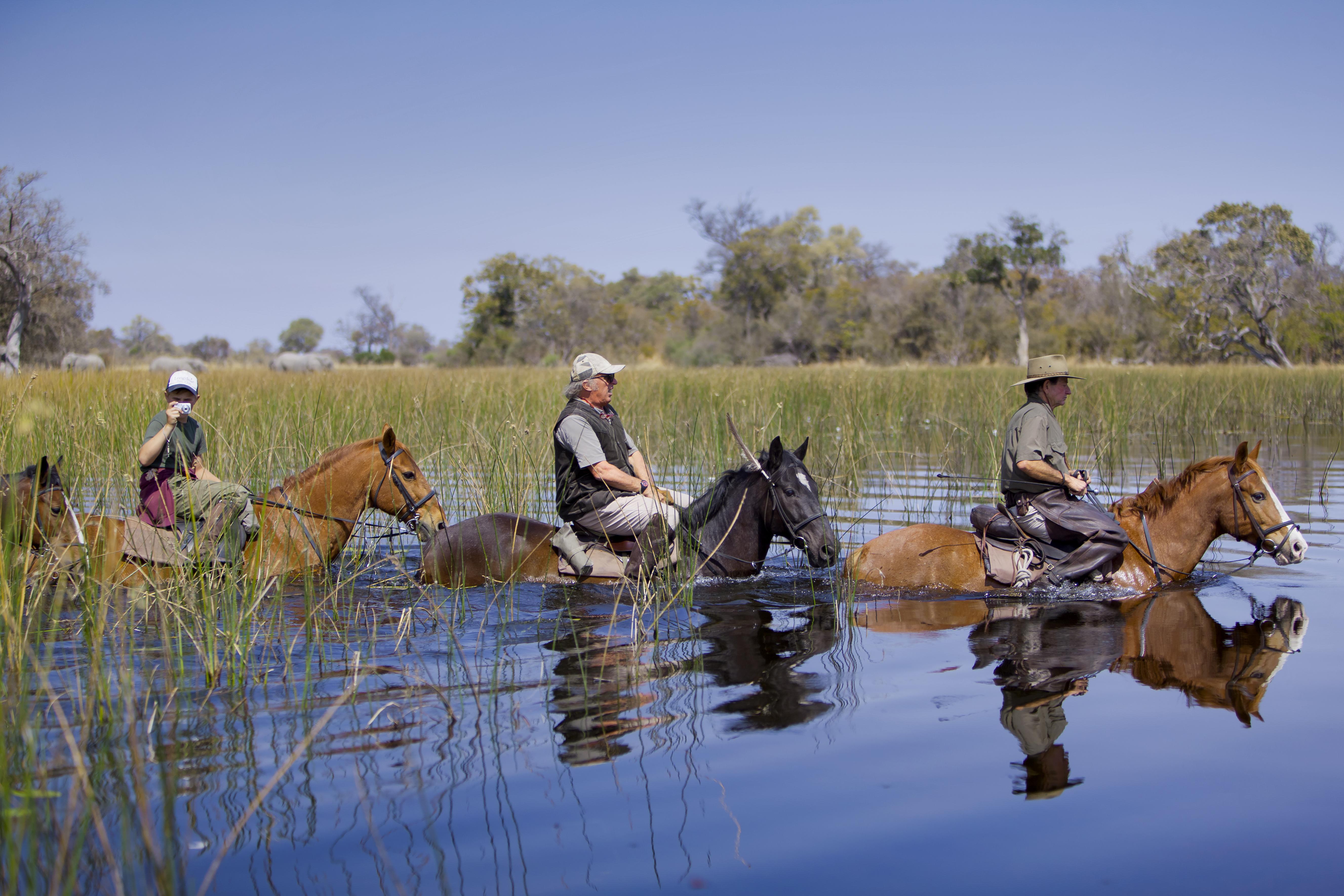 RAW Motswiri Botswana horses
