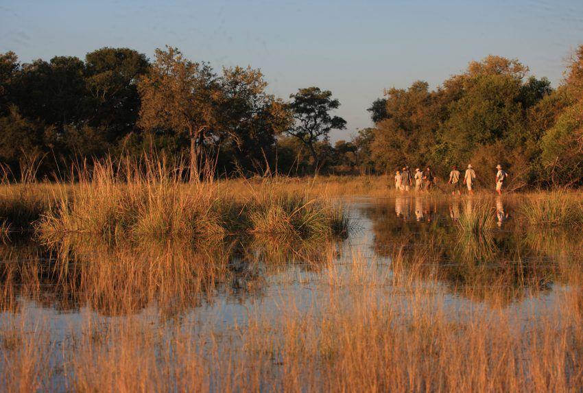 Botswana-Selinda-Canoe-Trail-Walk
