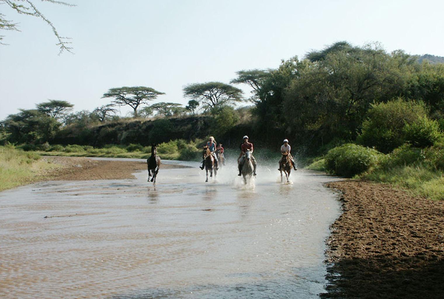 Borana-Kenya-Riding