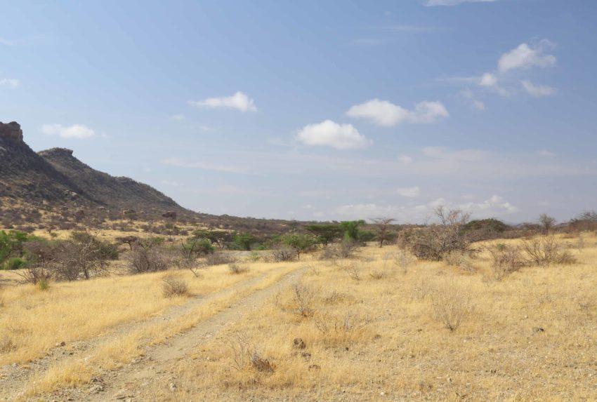 Sera Wildlife Conservancy Trust Kenya
