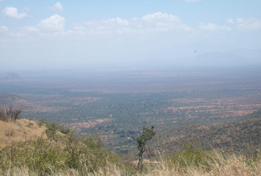 Lewa Walking Wild Kenya View
