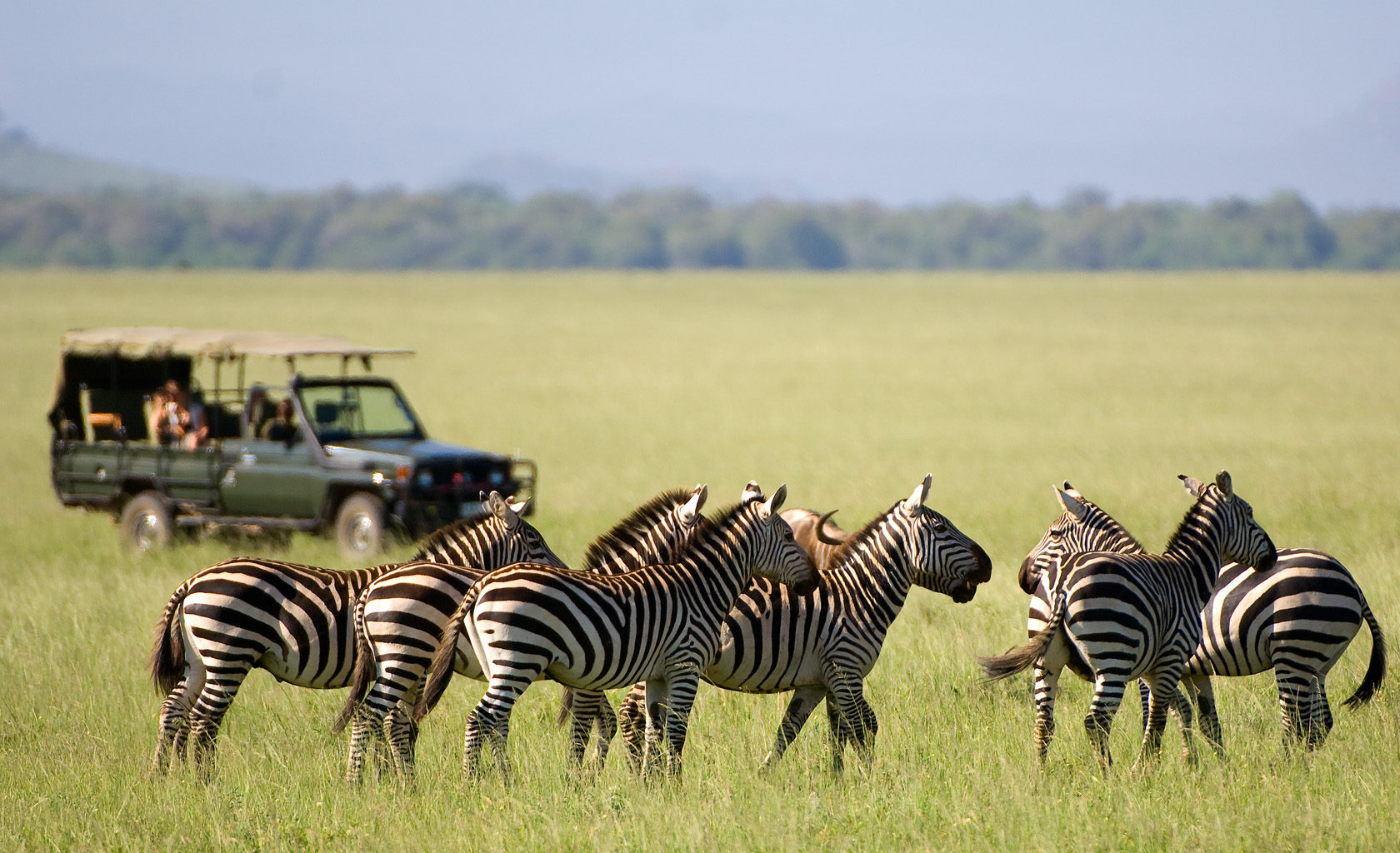 Great Rift Valley Kenya Game Drive