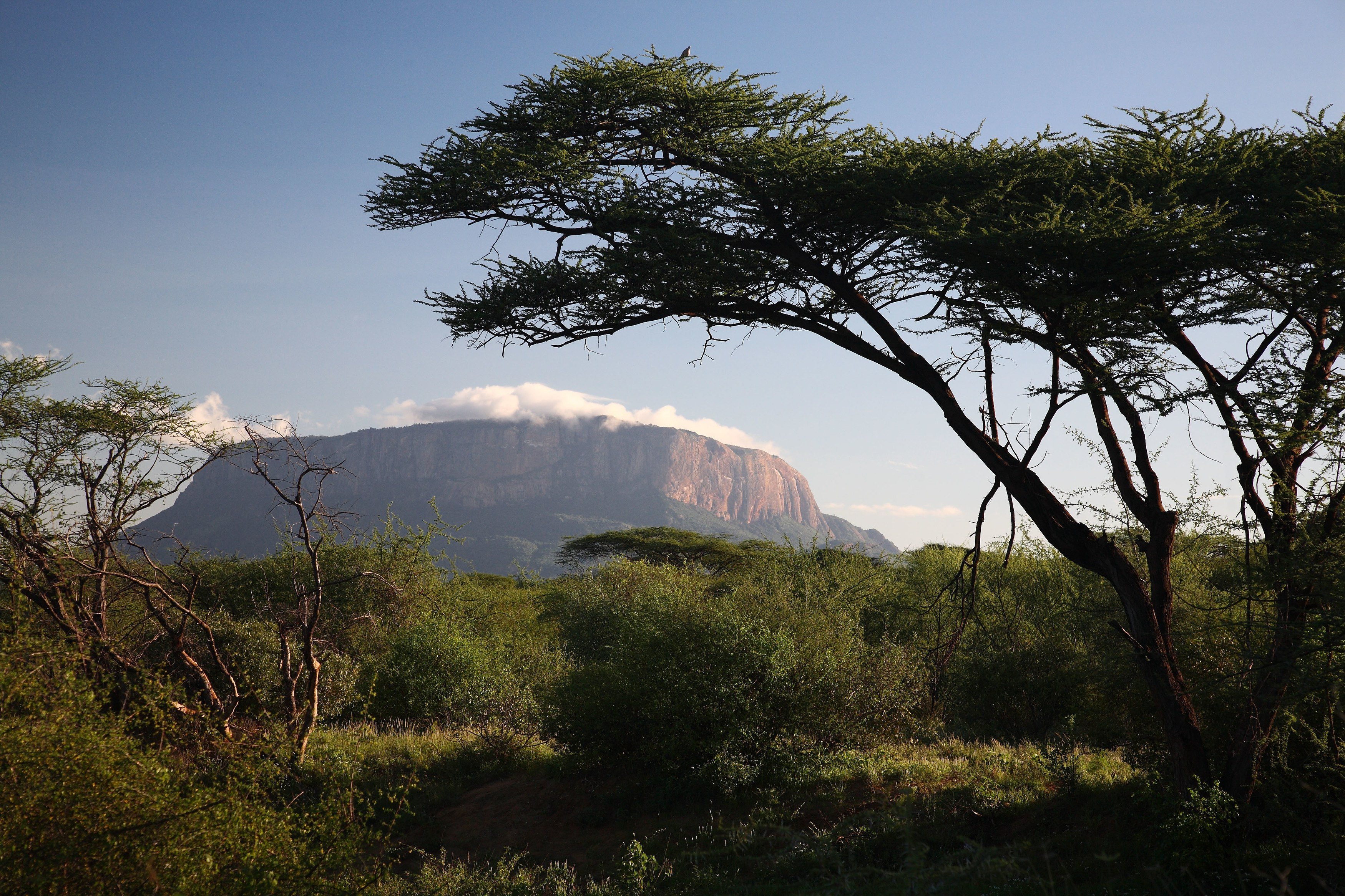 Samburu National Reserve