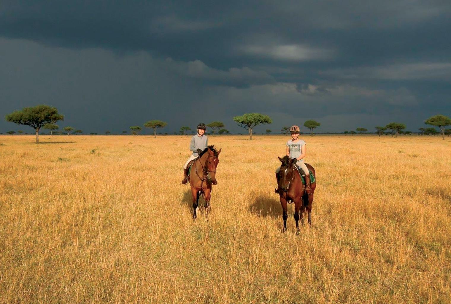 Ride-Kenya-Horses