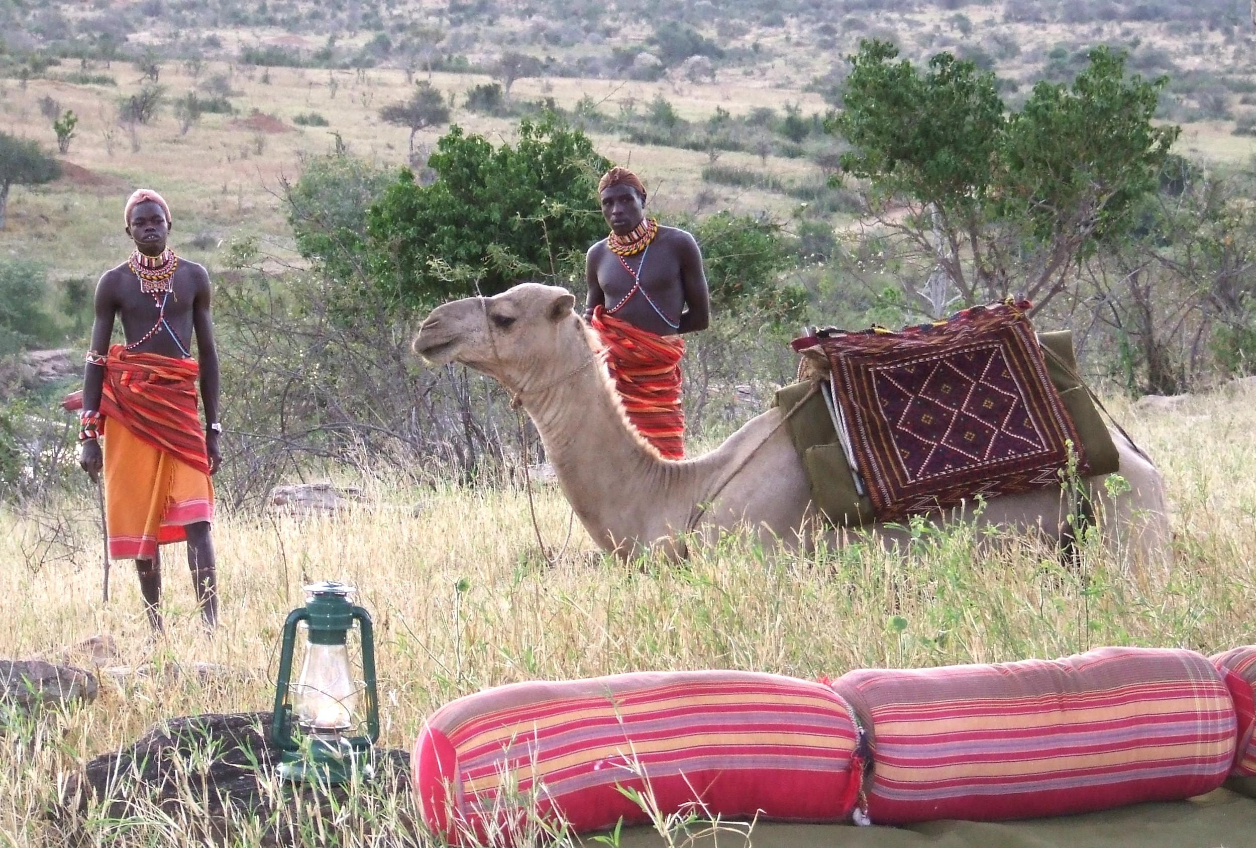 Lemartis Camp Kenya Camel