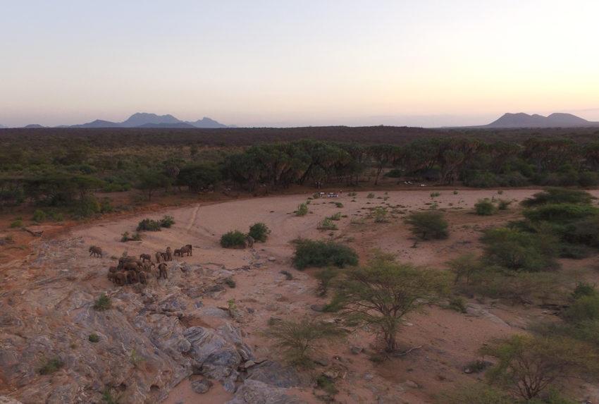 Kenya-Sera-Wildlife-Conservancy-Aerial-Landscape