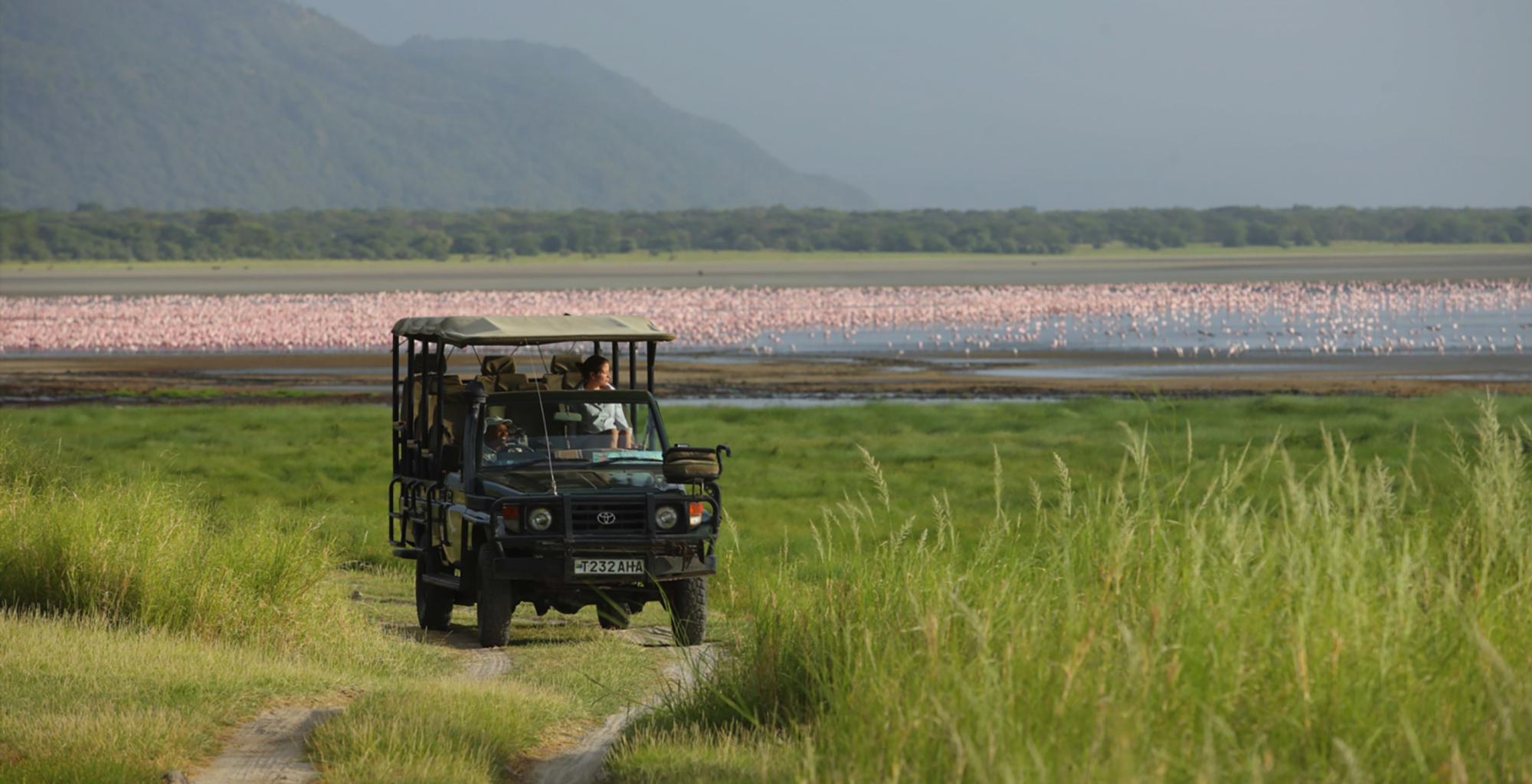 Tanzania-Safari-Drive