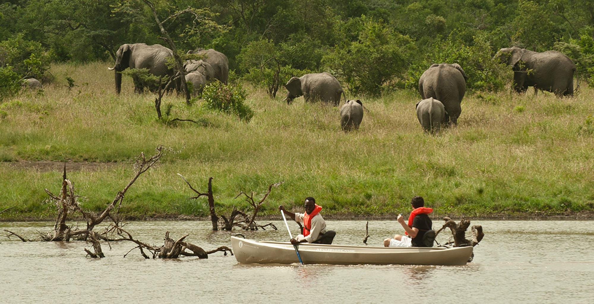 Kenya-Kicheche-Laikipia-Rowing-Elephant