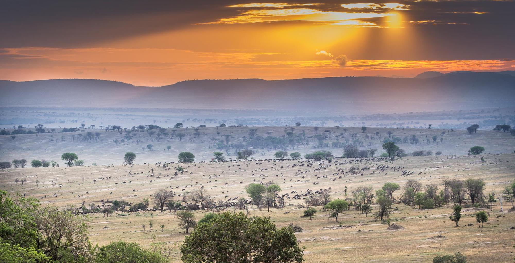 Tanzania-Landscape-Sunset