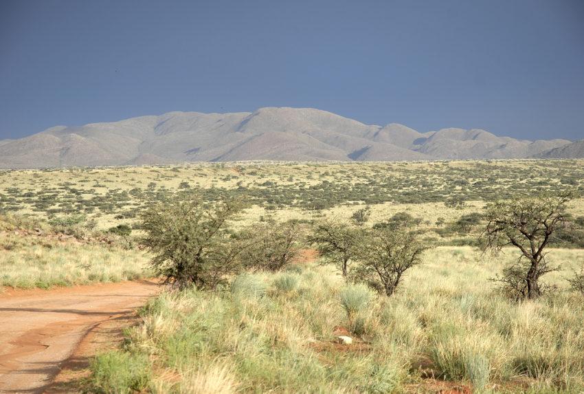 Tswalu Kalahari South Africa Landscape