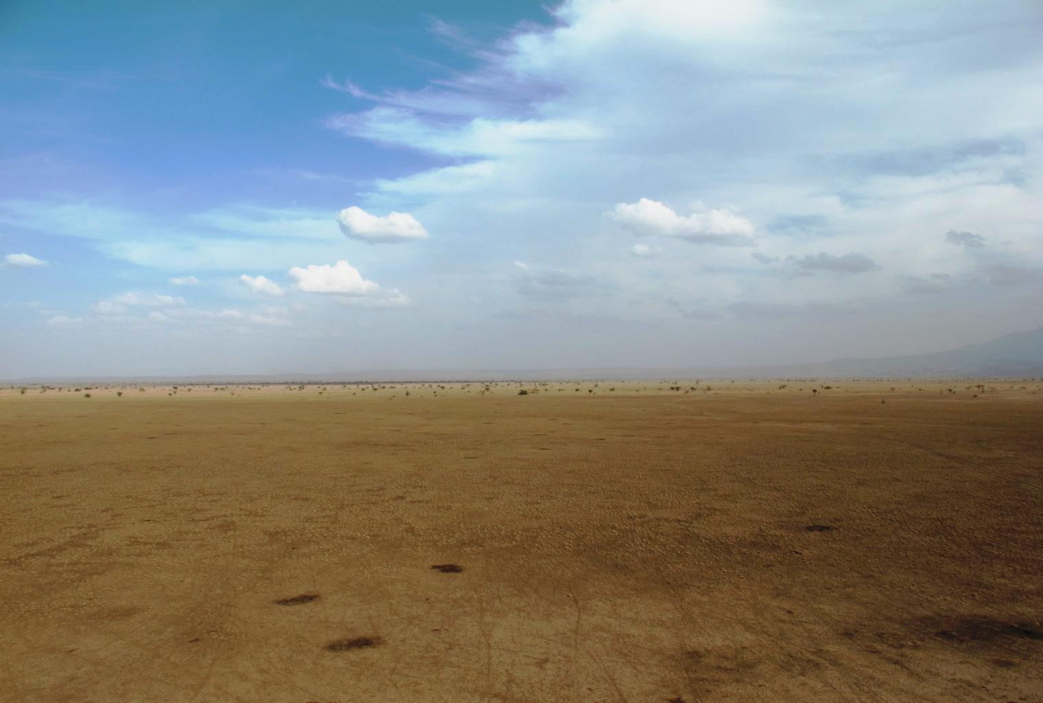 Awash & Ali Dege Ethiopia Plains