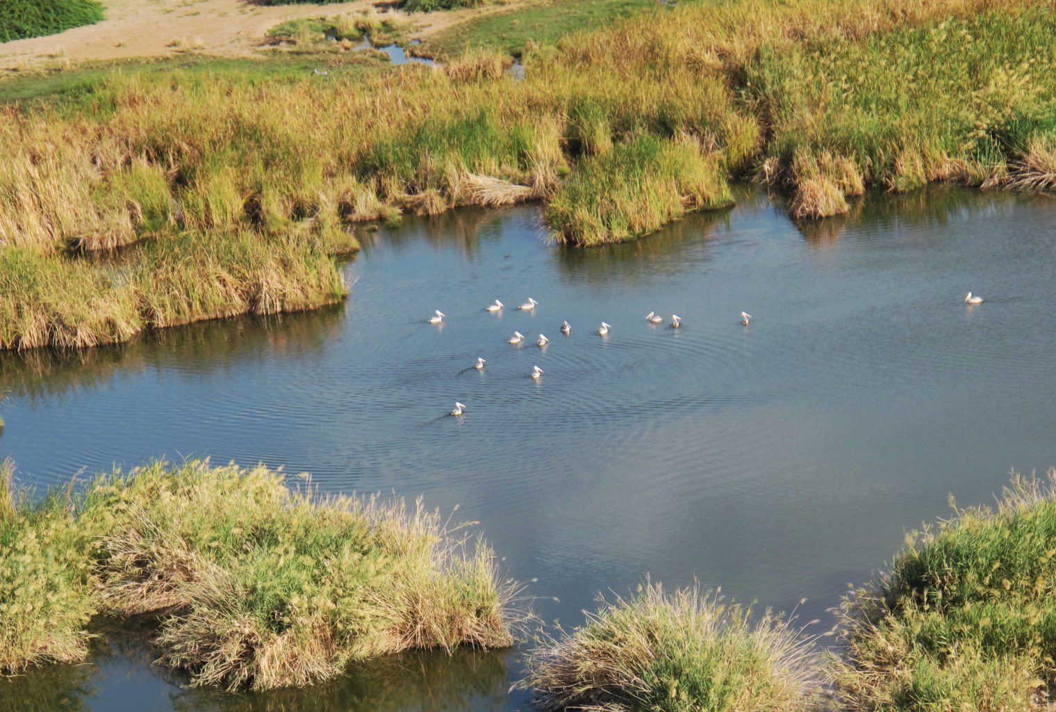 Awash & Ali Dege Ethiopia Lake