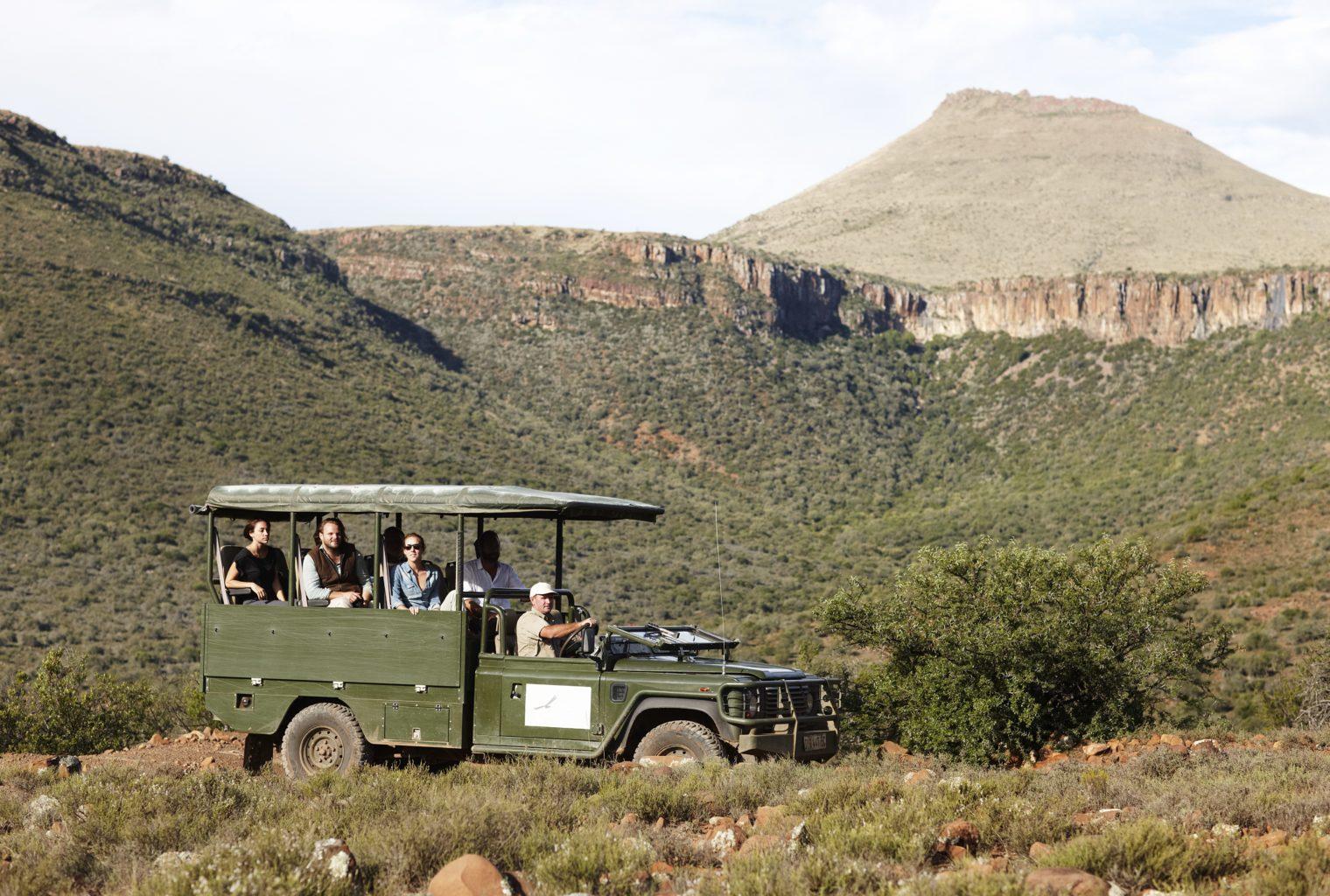 Safari in The Great Karoo