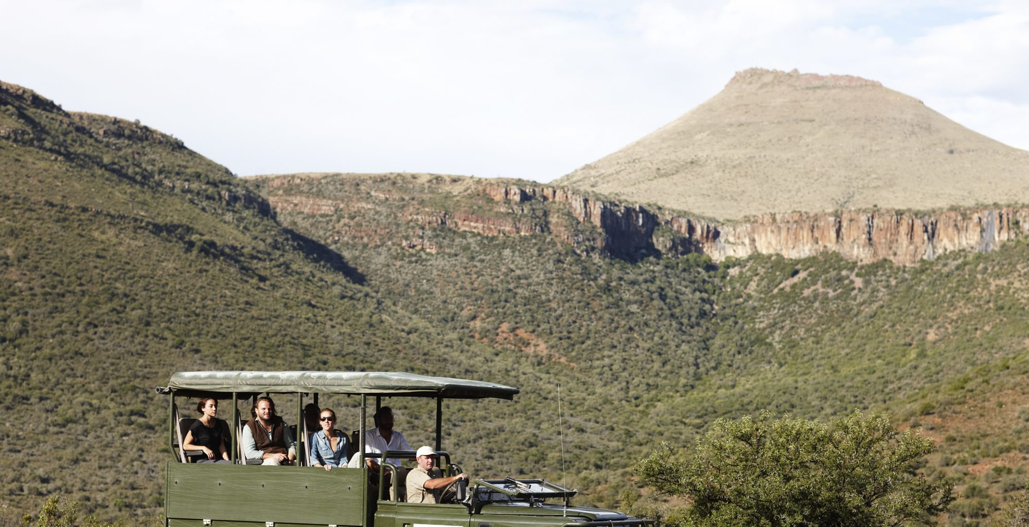 Safari in The Great Karoo