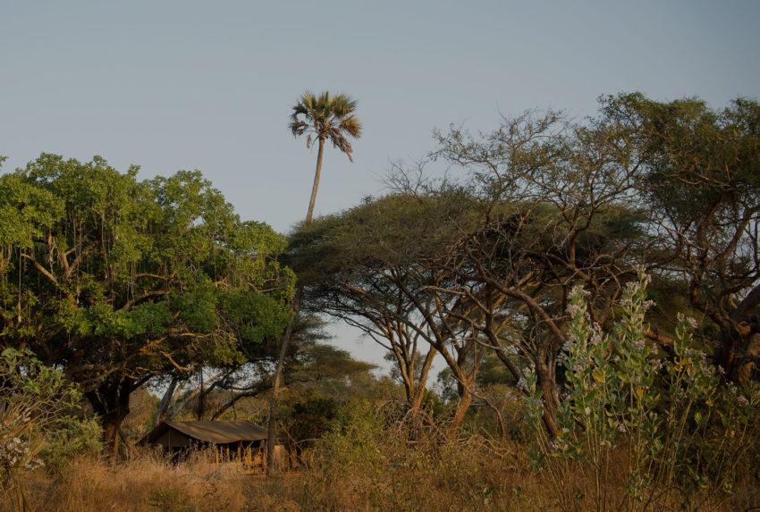 Chada-Katavi-Exterior-Tanzania-Hero-Tinted
