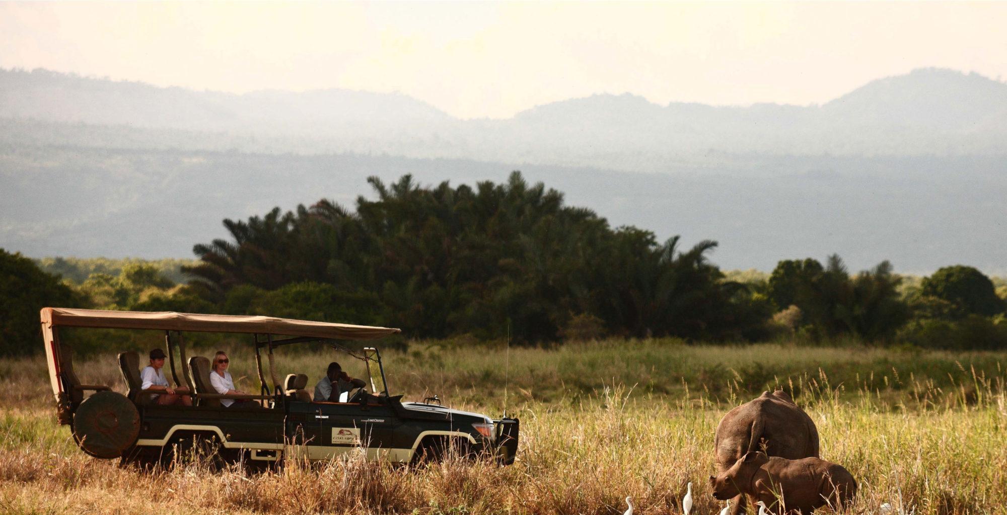 Elsa's-Kopje-Kenya-Meru-Wildlife