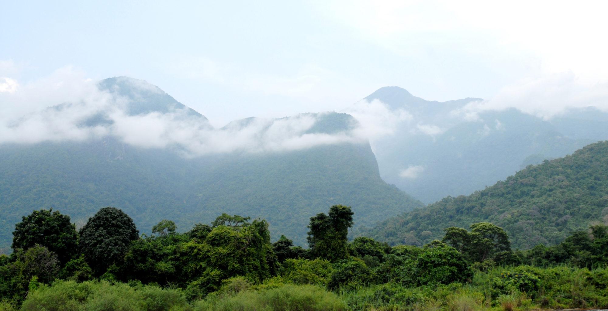 Tanzania-Chimp-Nest-Landscape