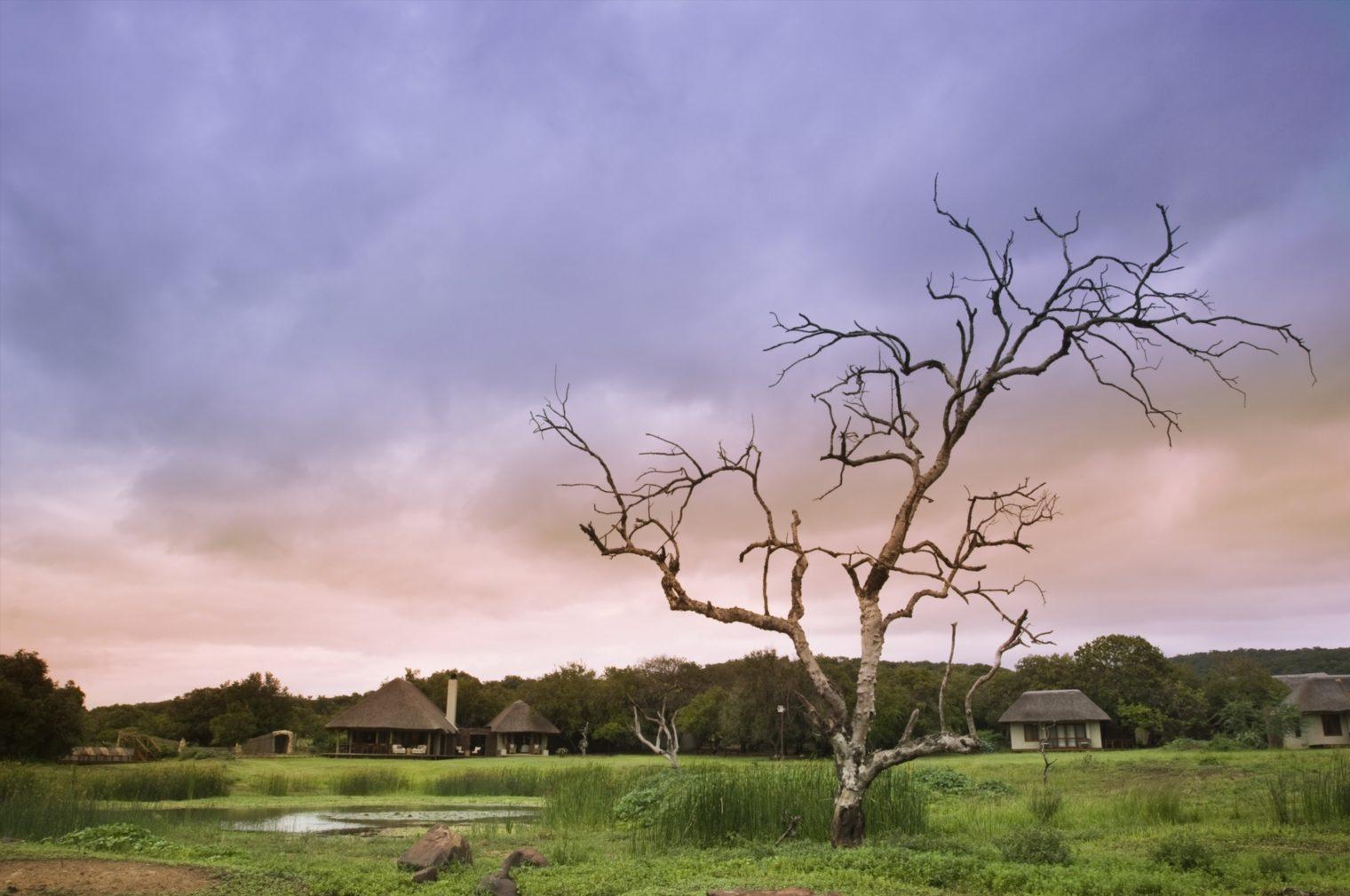 Guest-area-at-Phinda-Zuka-Lodge (9)