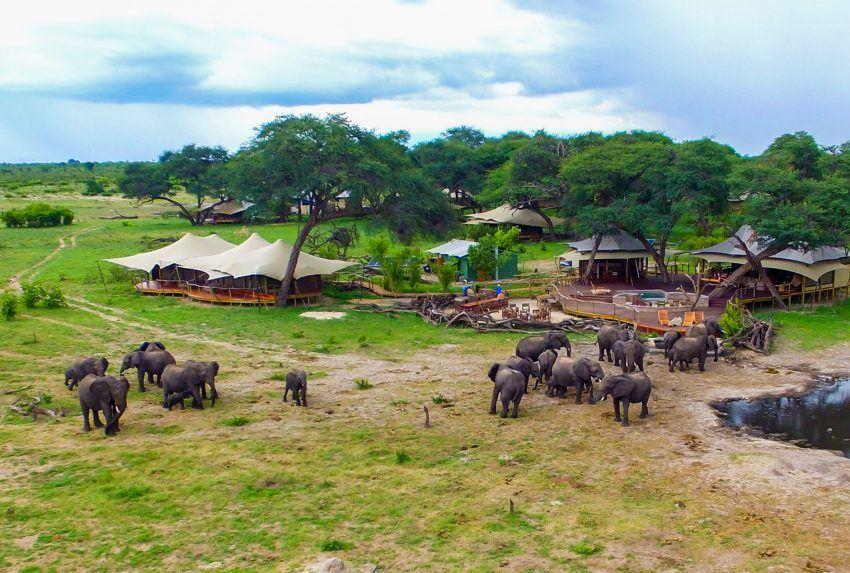 Zimbabwe-Somalisa-Acacia-Elephant-Exterior-Hero
