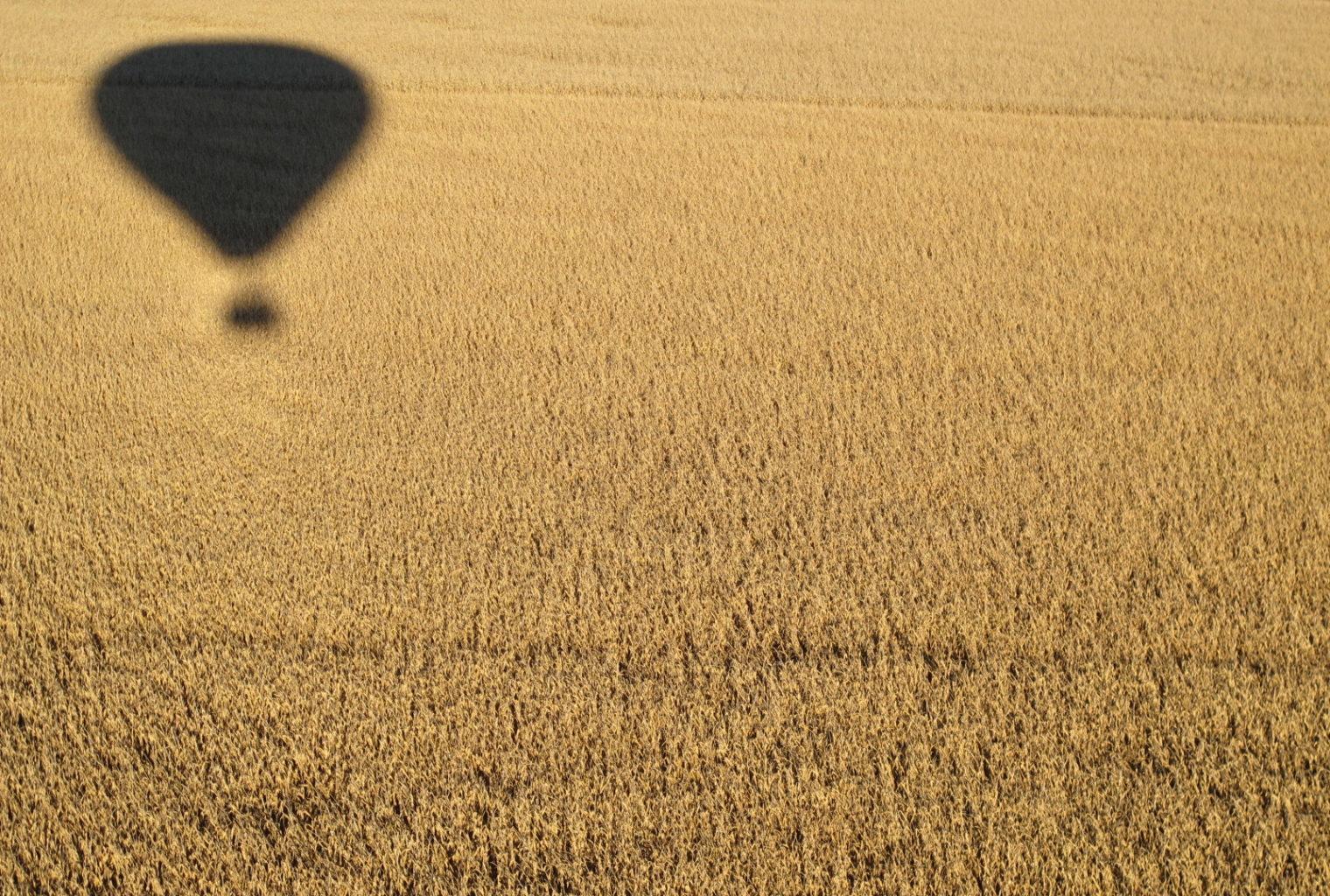 Three Trees at Spioenkop South Africa Balloon