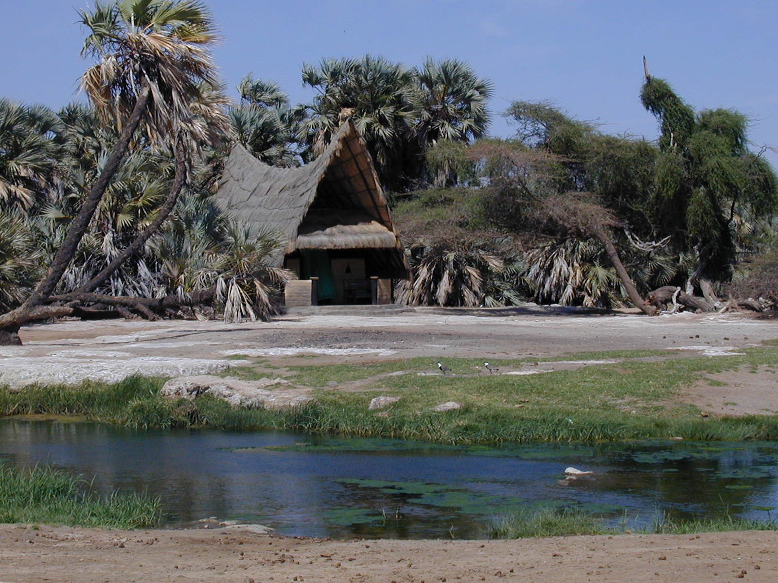 Kalacha Kenya Exterior