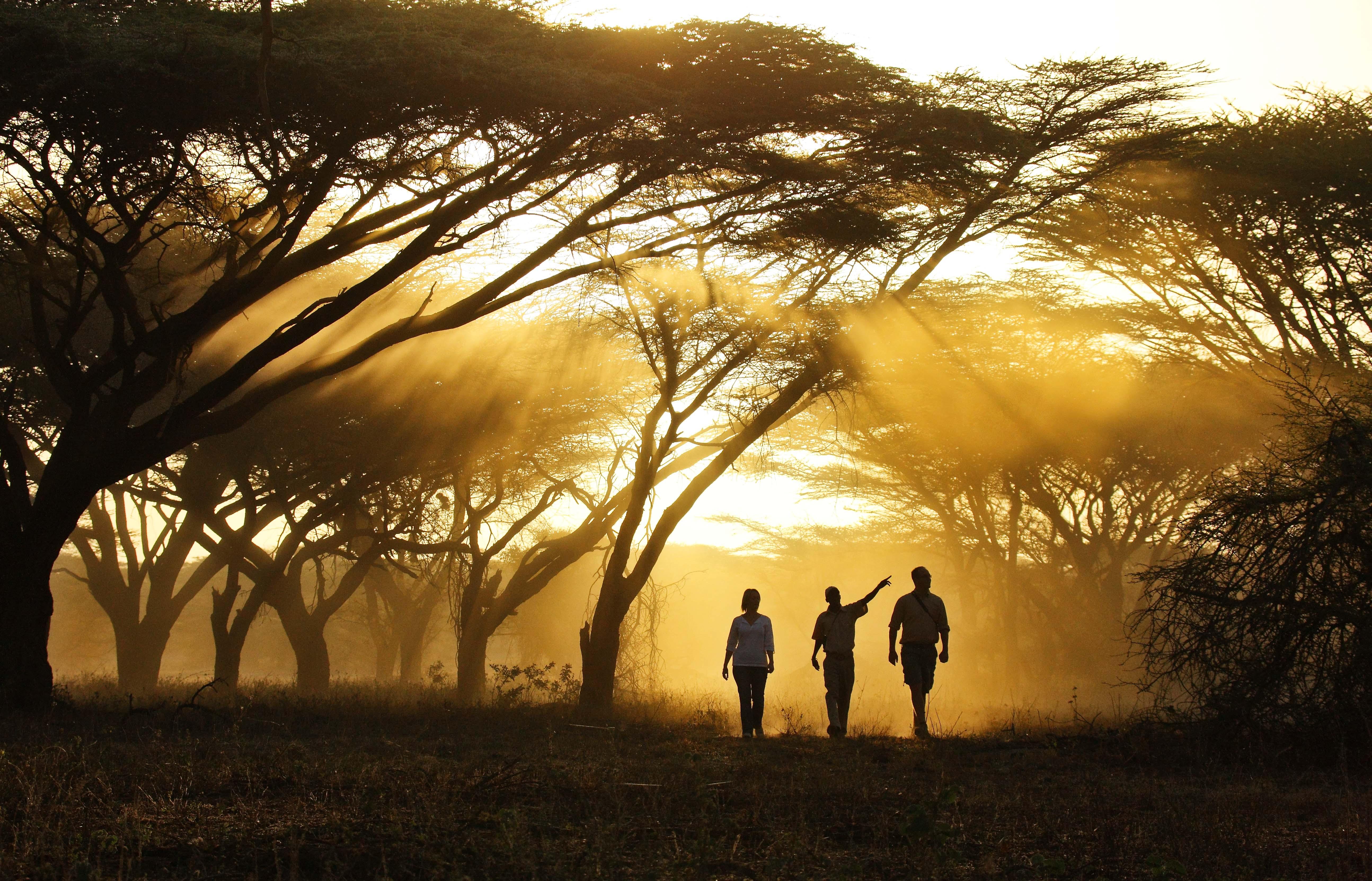 Joys Camp Kenya Bush Walk
