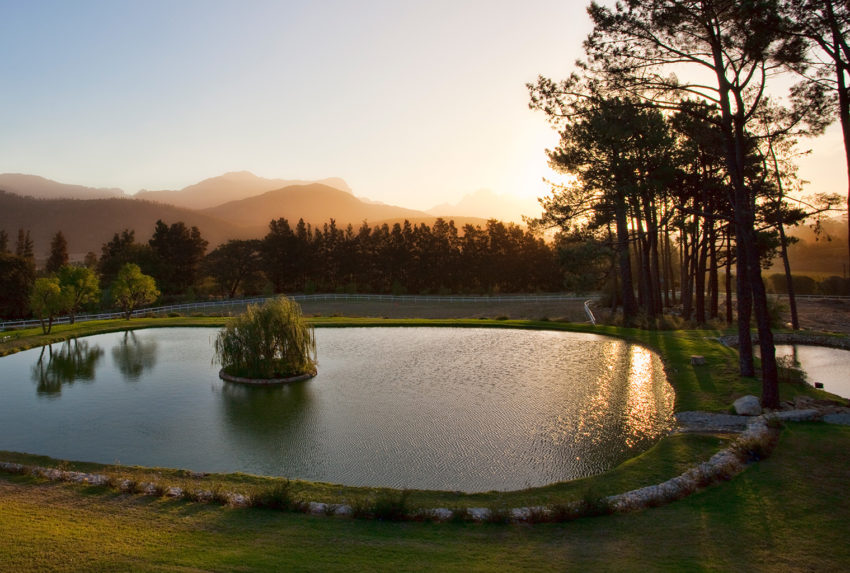 La-Residence, Winelands, South-Africa, Pond