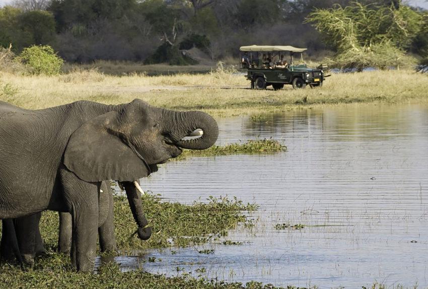 Liwonde-Safari-Experience-Rwanda