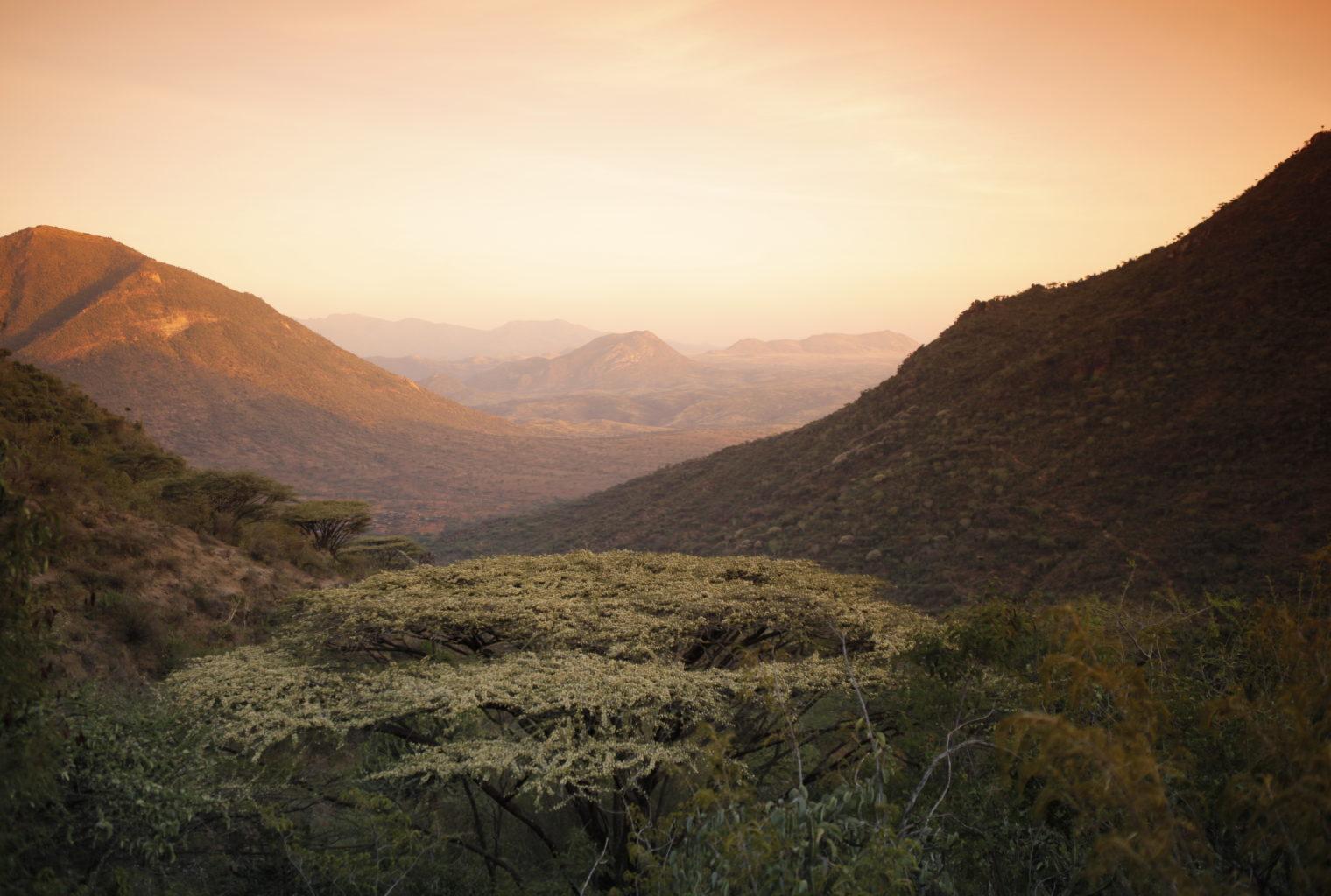 Desert Rose Lodge Kenya View