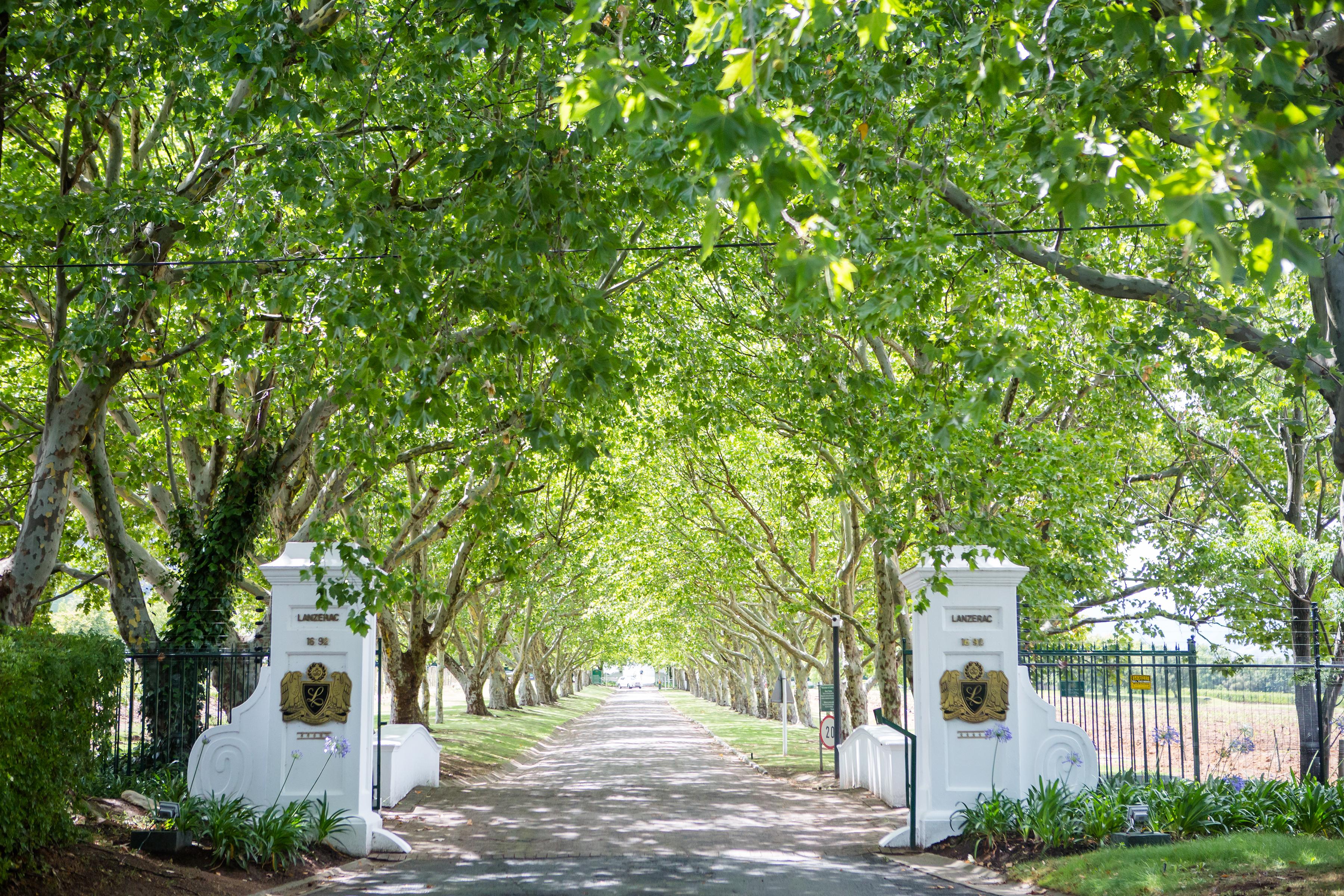 Lanzerac South Africa Entrance