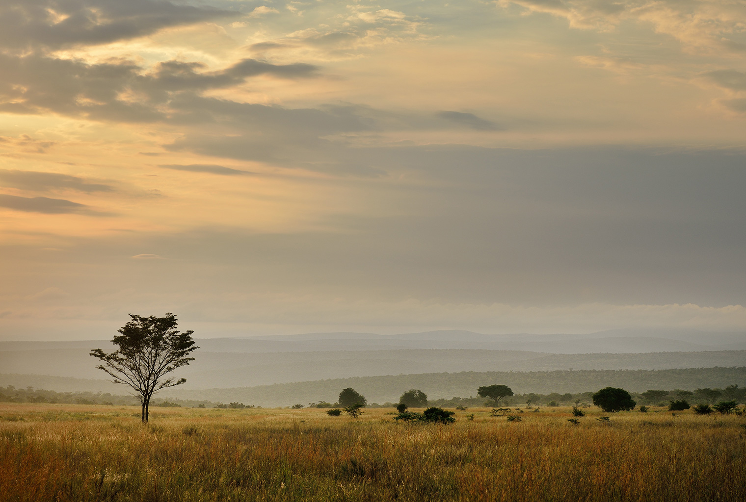 Makweti-Safari-Lodge-South-Africa-Scenery