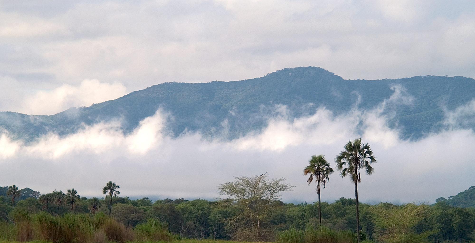 Malawi-Liwonde-National-Park-Landscape