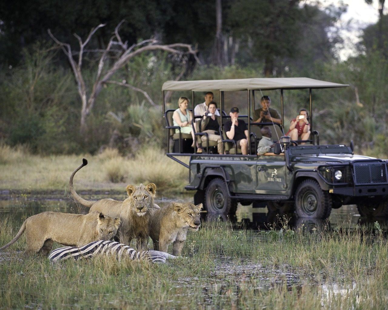 Botswana Tubu Tree Camp Safari