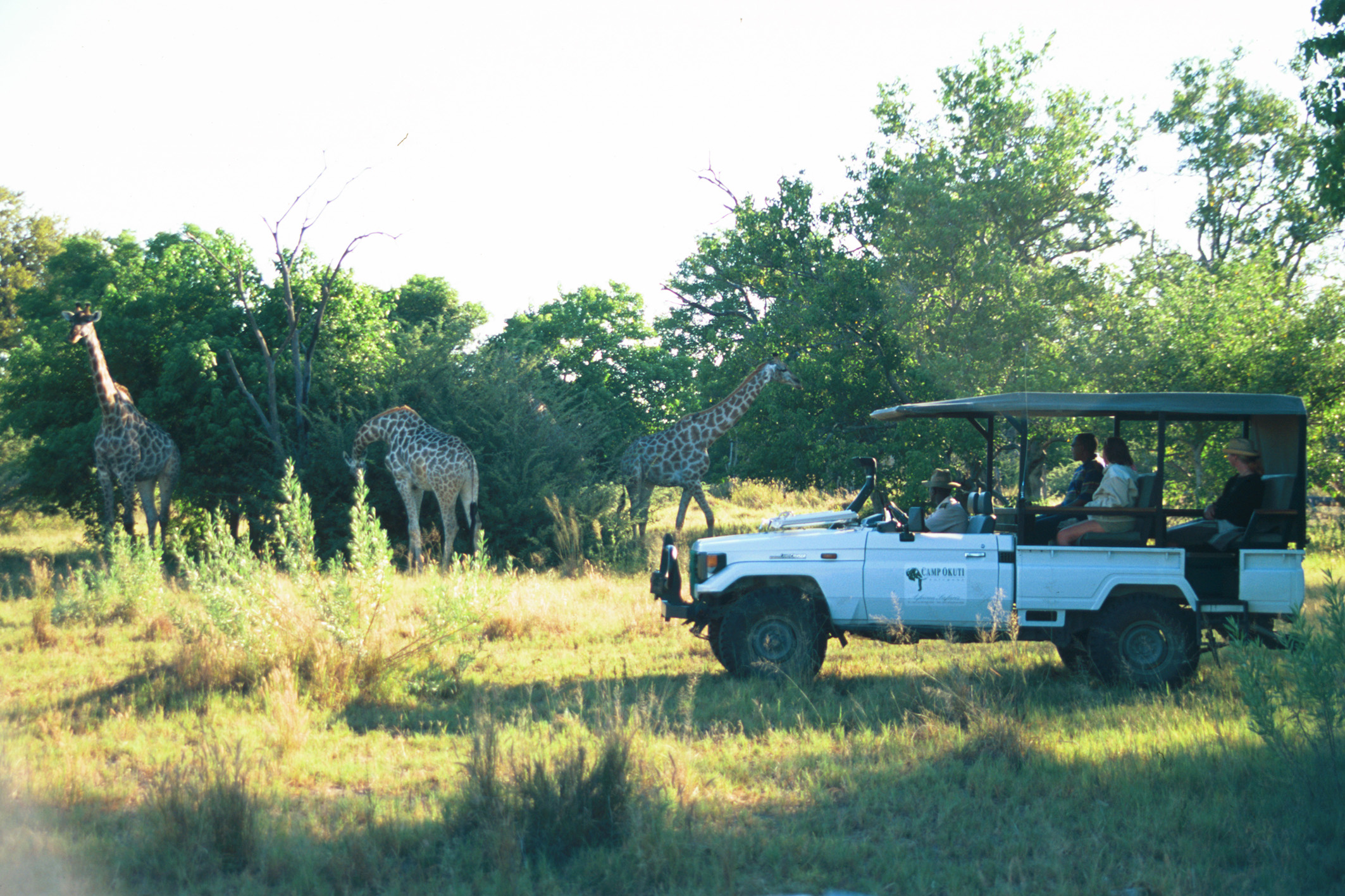 Ker and Downey Young Explorer Botswana Gamedrive