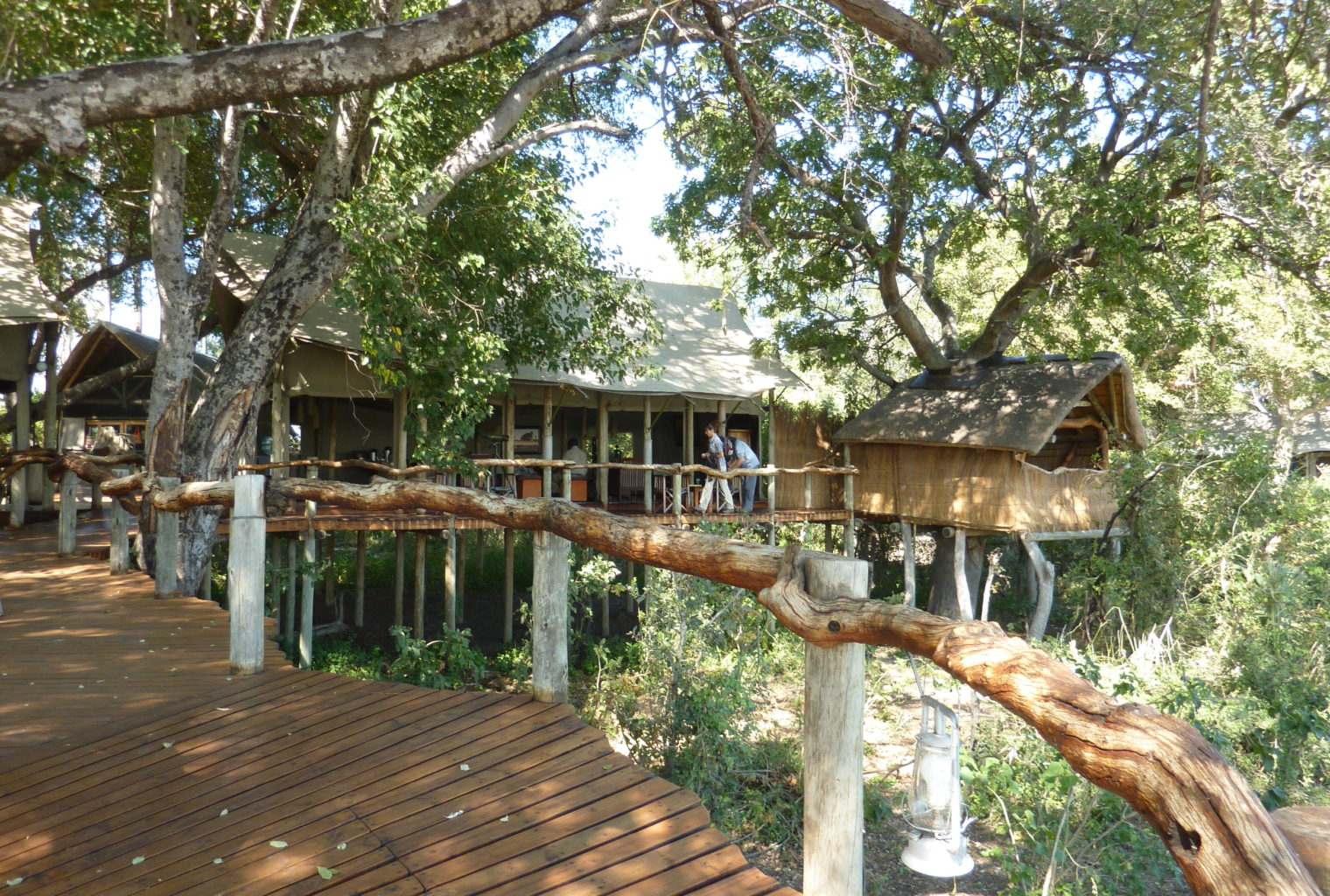 Botswana Tubu Tree Camp Little Tubu Exterior