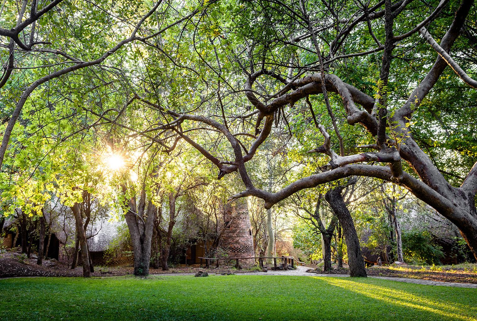 Pamushana journeys by design for Garden design zimbabwe