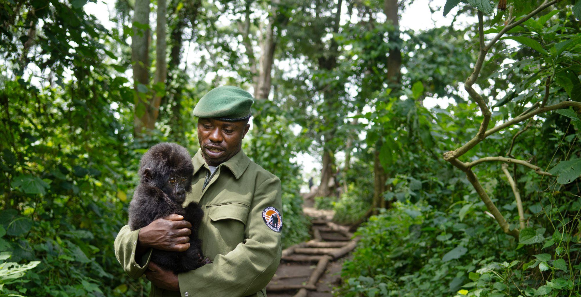 Democratic-Republic-of-Congo-Virunga-Ranger-Gorilla